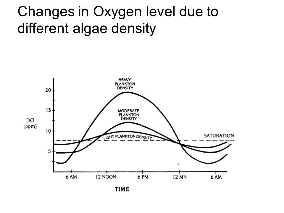 Changes in Oxygen level due to different algae density