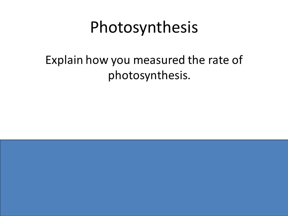 Photosynthesis Explain how you measured the rate of photosynthesis.