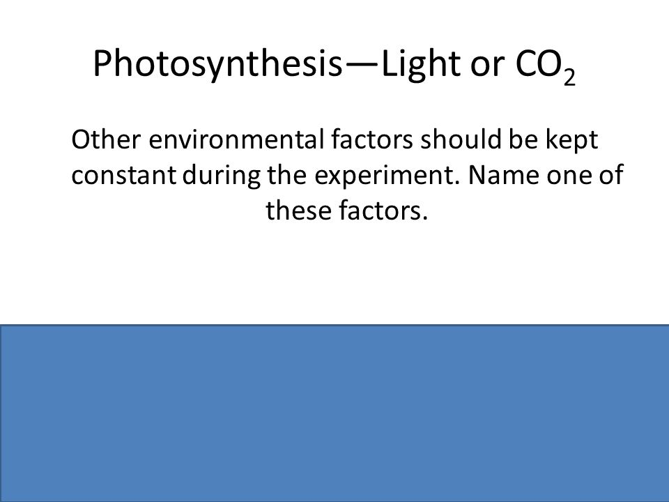 Photosynthesis—Light or CO2