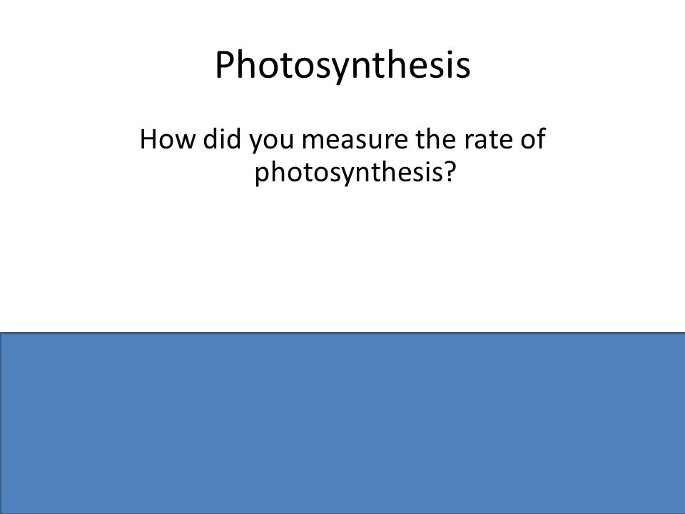 Photosynthesis How did you measure the rate of photosynthesis.