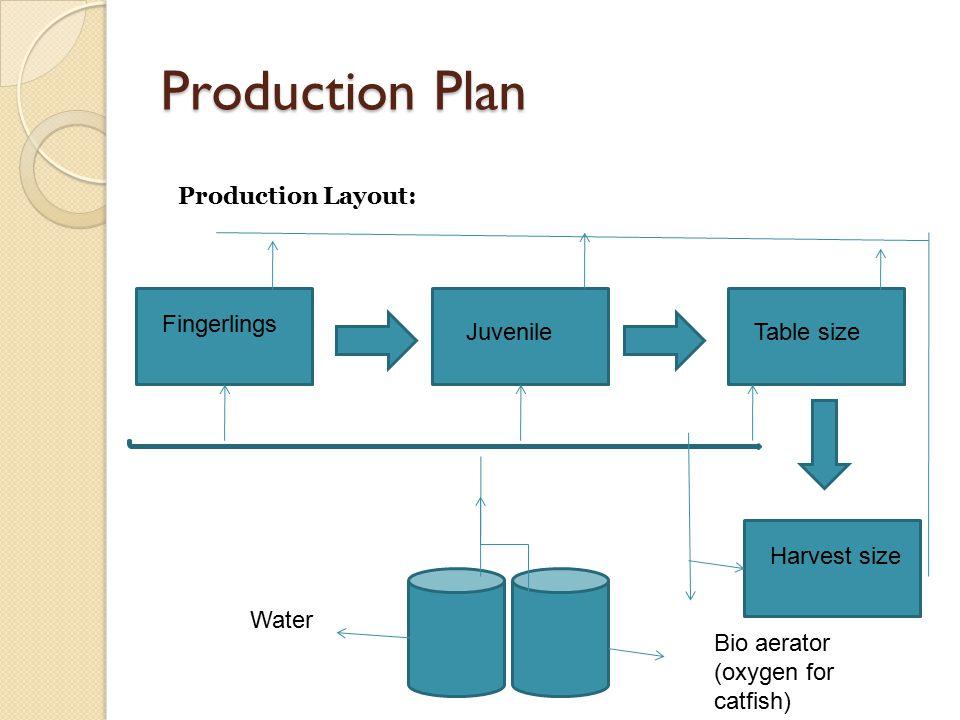 Production Plan Production Layout: Fingerlings Juvenile Table size