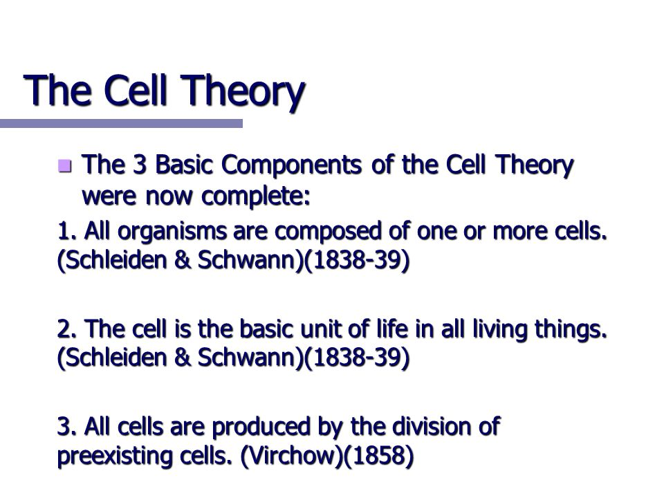 The Cell Theory The 3 Basic Components of the Cell Theory were now complete: