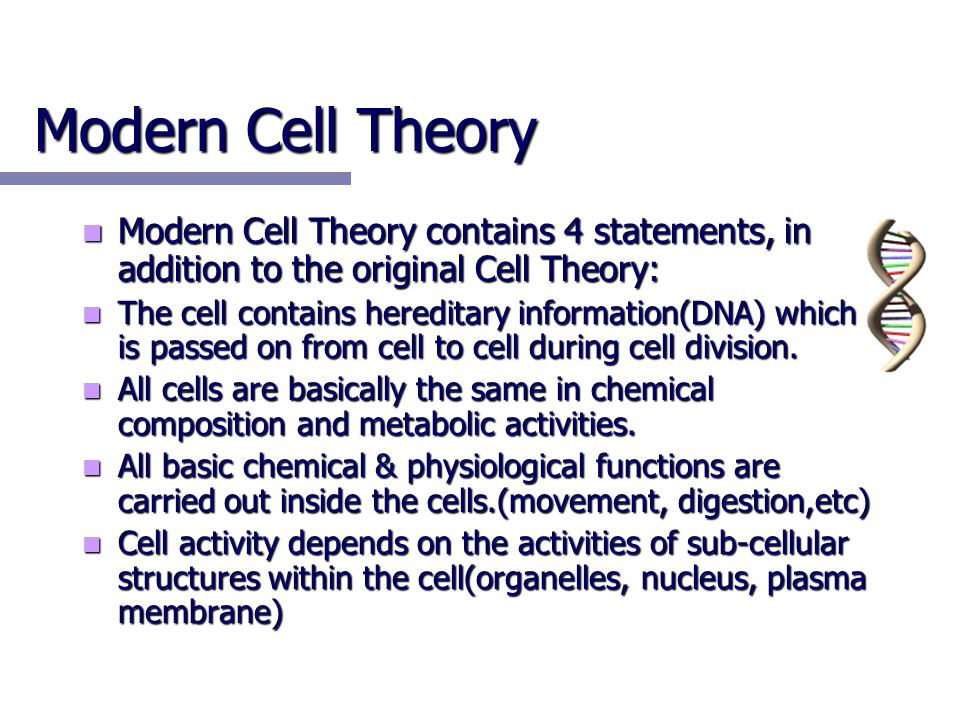 Modern Cell Theory Modern Cell Theory contains 4 statements, in addition to the original Cell Theory: