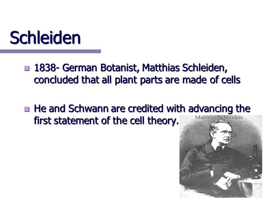 Schleiden 1838- German Botanist, Matthias Schleiden, concluded that all plant parts are made of cells.
