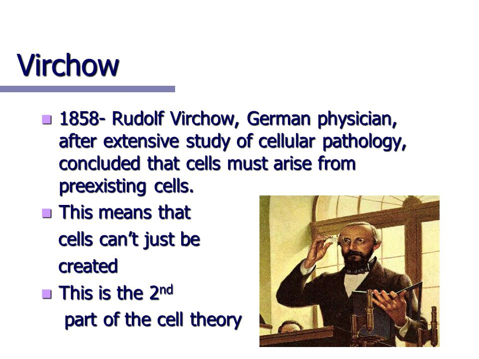 Virchow 1858- Rudolf Virchow, German physician, after extensive study of cellular pathology, concluded that cells must arise from preexisting cells.