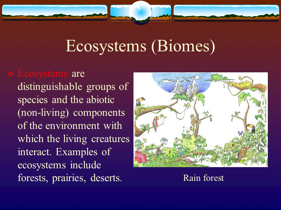 Ecosystems (Biomes)