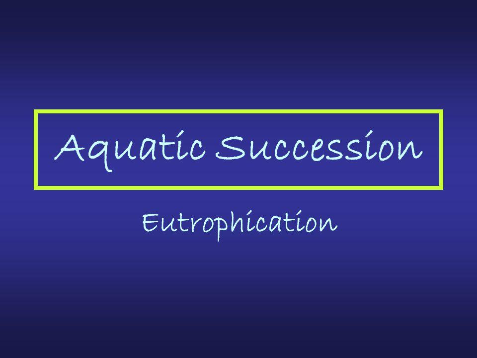 Aquatic Succession Eutrophication
