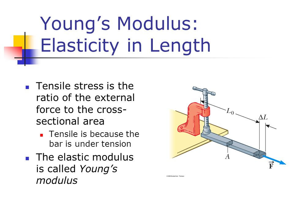 Young's Modulus: Elasticity in Length