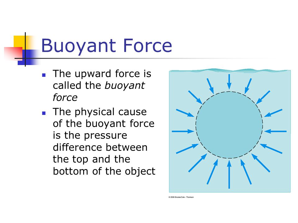 Buoyant Force The upward force is called the buoyant force