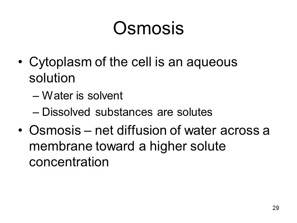 Osmosis Cytoplasm of the cell is an aqueous solution