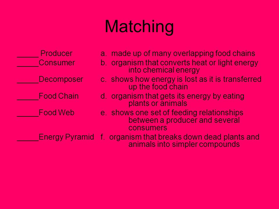 Matching _____ Producer a. made up of many overlapping food chains
