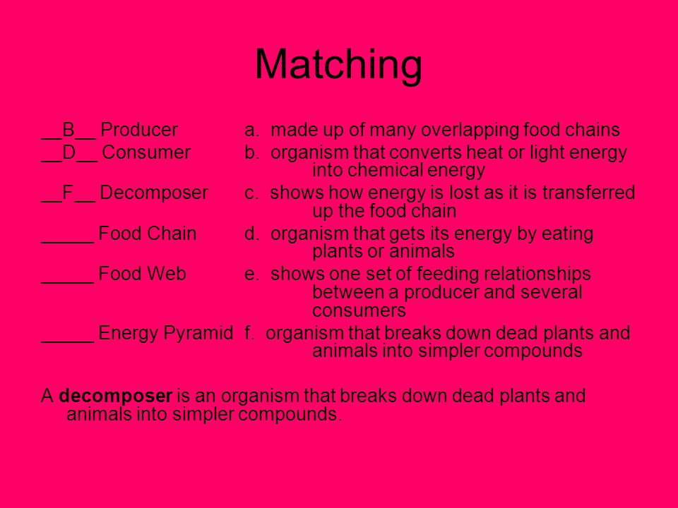 Matching __B__ Producer a. made up of many overlapping food chains