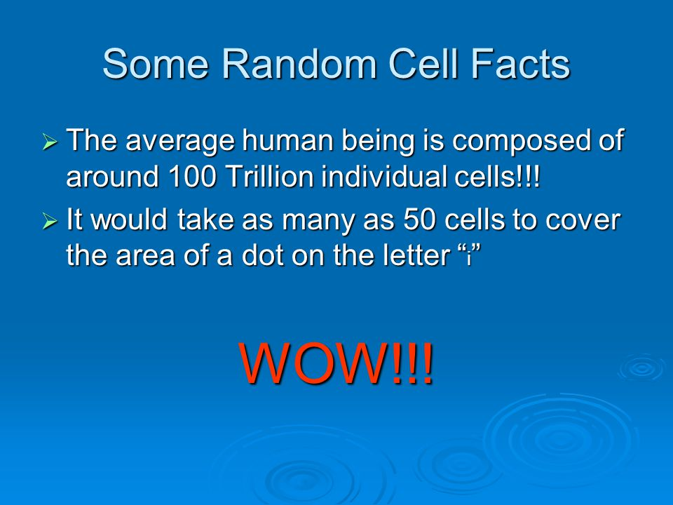 WOW!!! Some Random Cell Facts