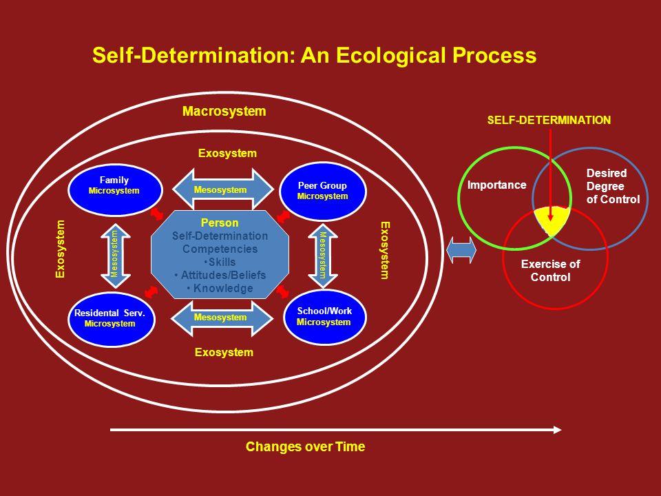 Self-Determination Competencies