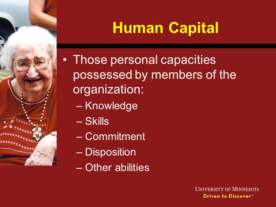 Human Capital Those personal capacities possessed by members of the organization: Knowledge. Skills.