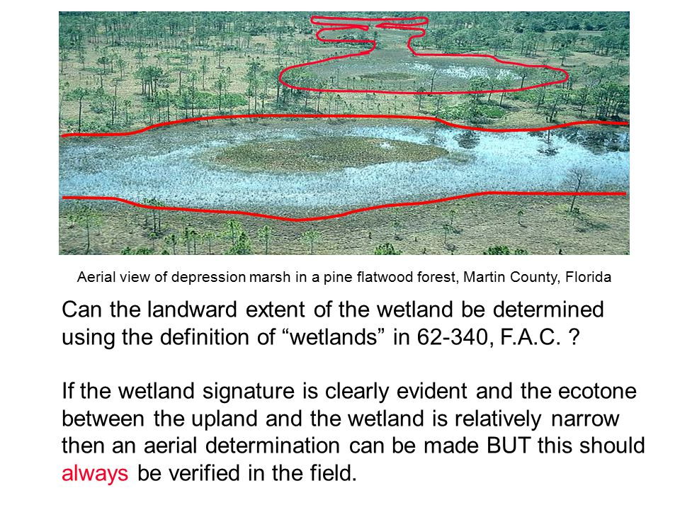 Can the landward extent of the wetland be determined