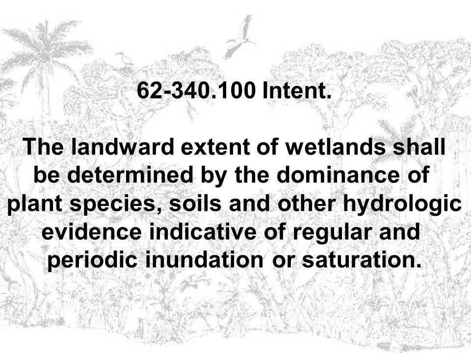 The landward extent of wetlands shall