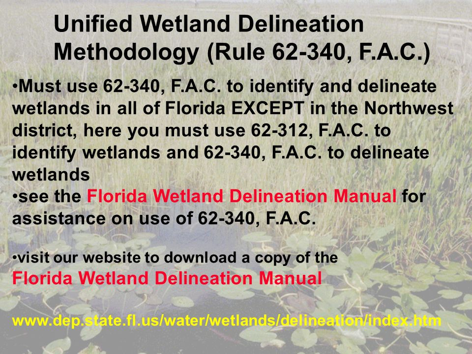 Unified Wetland Delineation Methodology (Rule 62-340, F.A.C.)