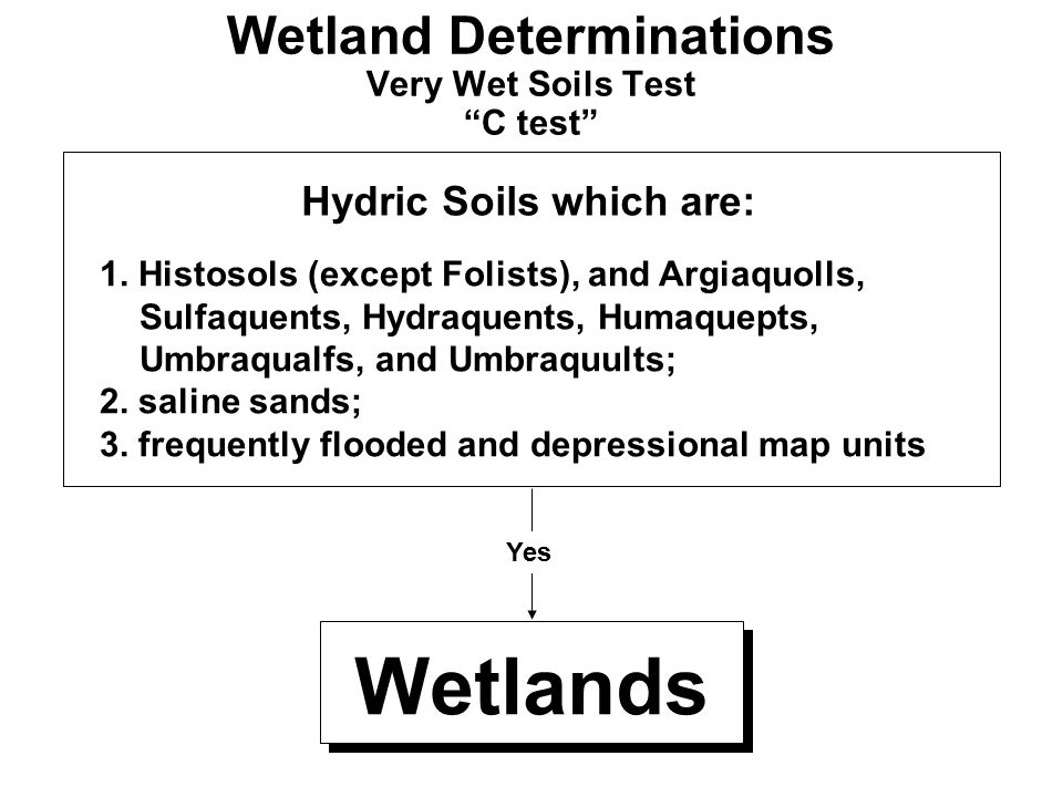 Wetland Determinations Very Wet Soils Test C test