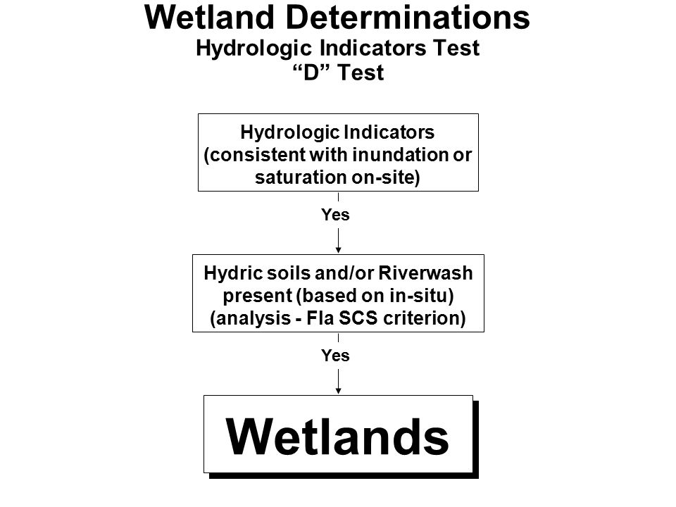 Wetland Determinations Hydrologic Indicators Test D Test