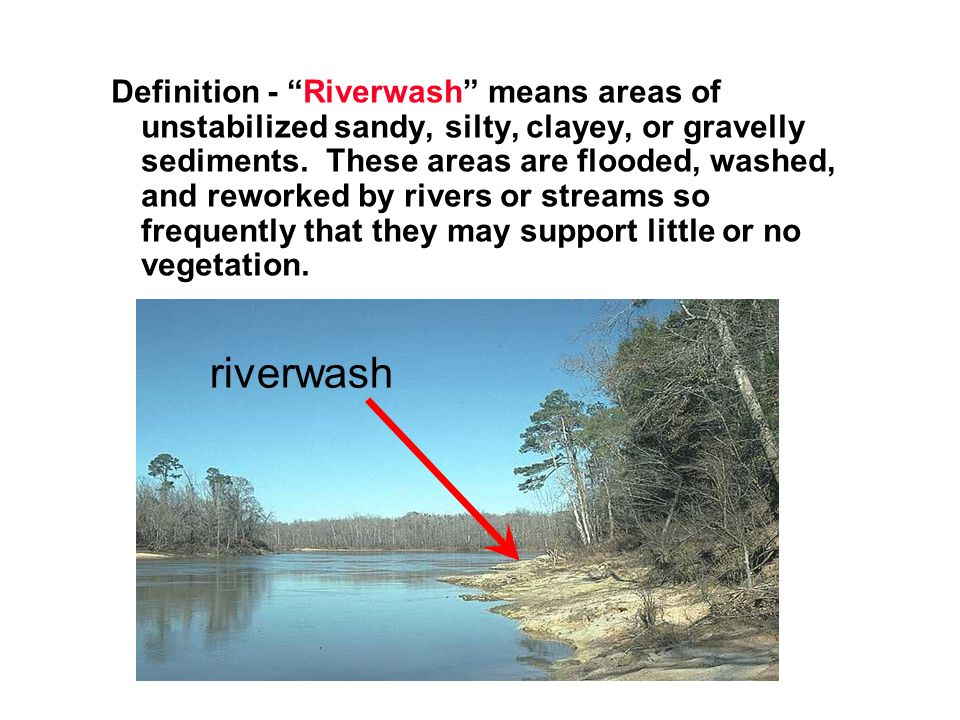 Definition - Riverwash means areas of unstabilized sandy, silty, clayey, or gravelly sediments. These areas are flooded, washed, and reworked by rivers or streams so frequently that they may support little or no vegetation.