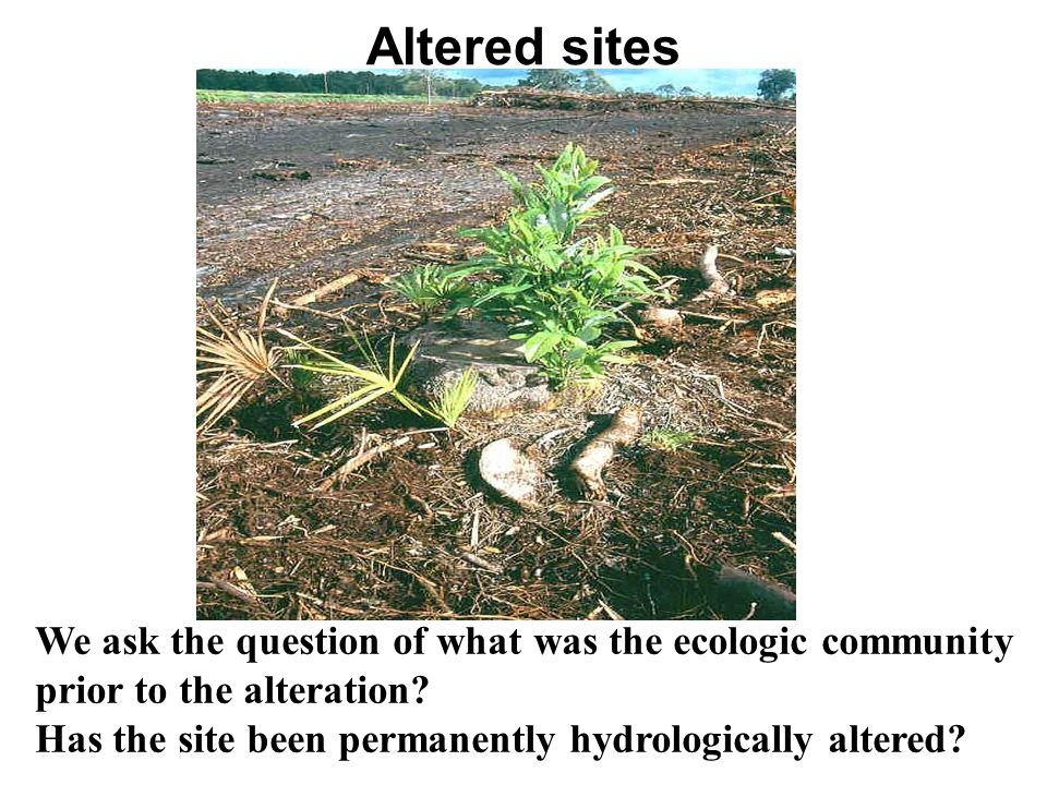 Altered sites We ask the question of what was the ecologic community