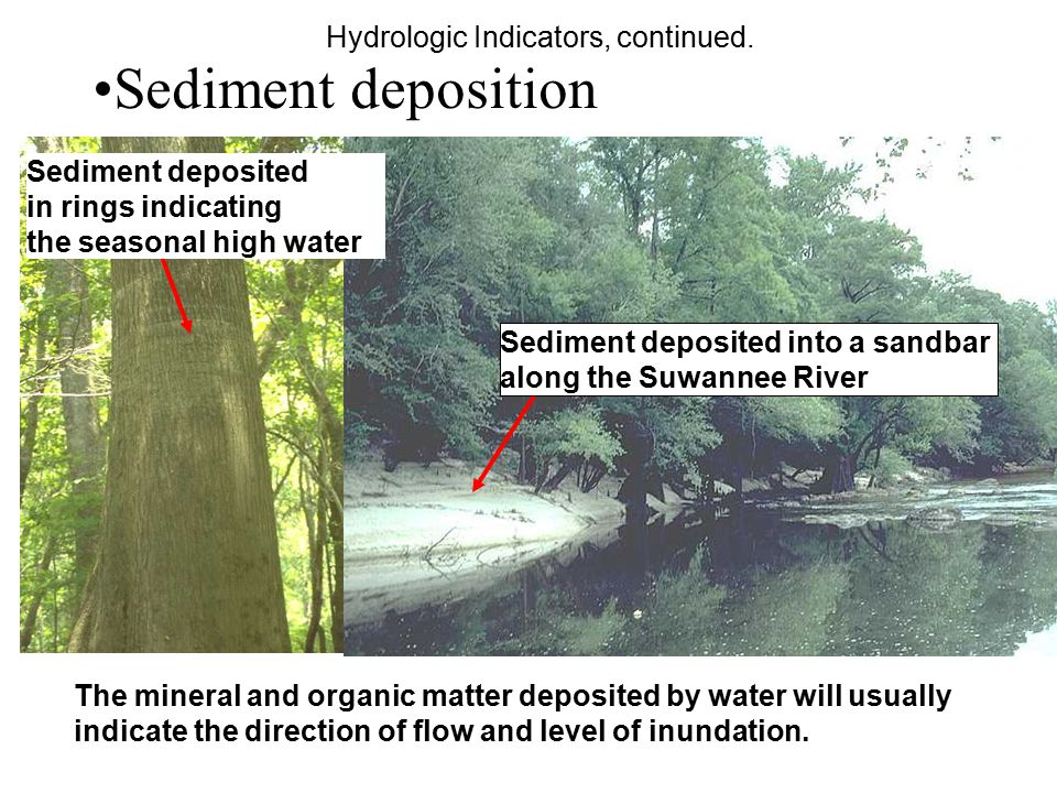Sediment deposition Hydrologic Indicators, continued.