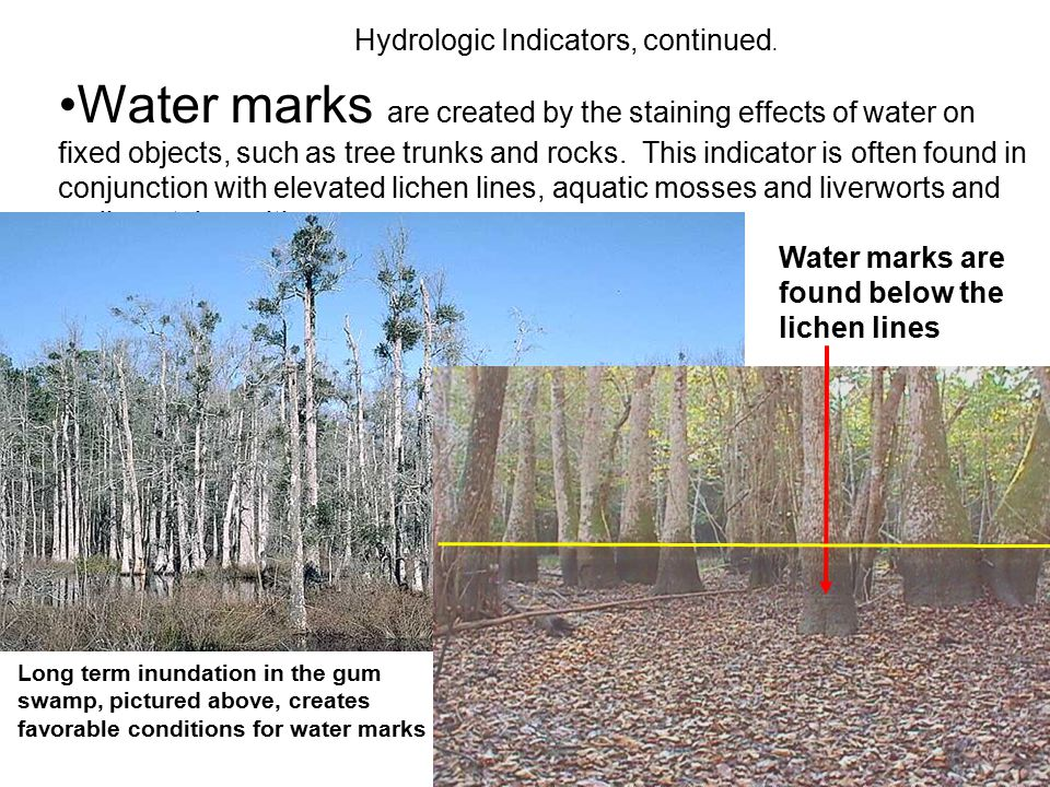 Hydrologic Indicators, continued.