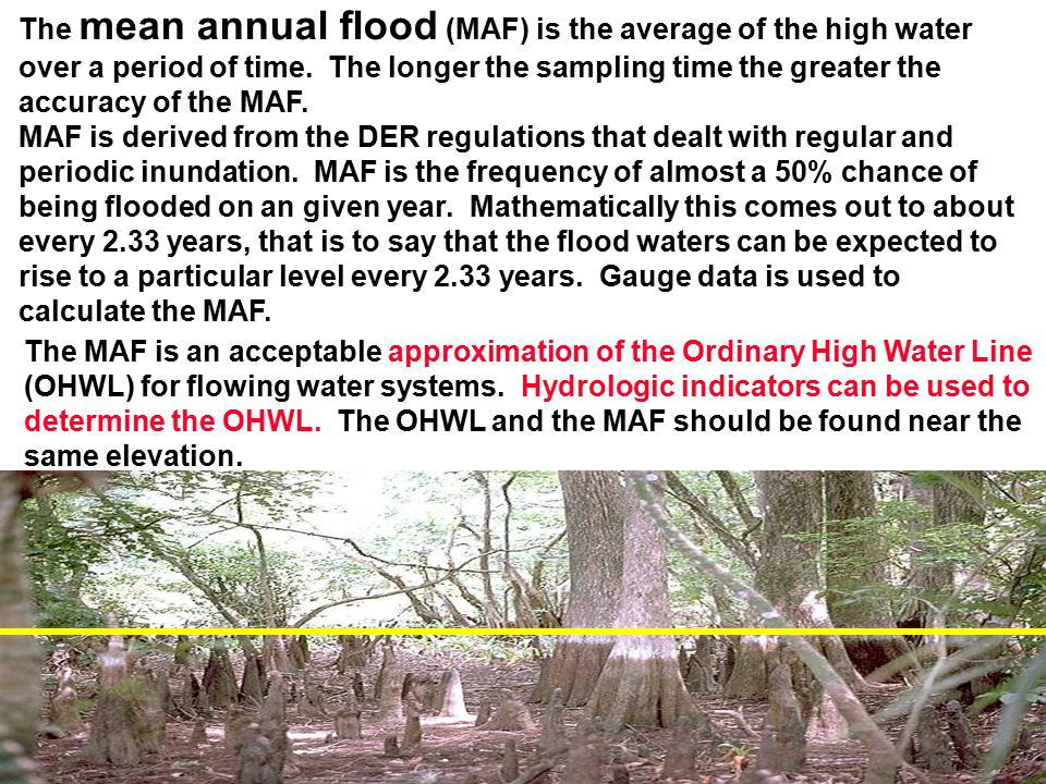 The mean annual flood (MAF) is the average of the high water over a period of time. The longer the sampling time the greater the accuracy of the MAF.