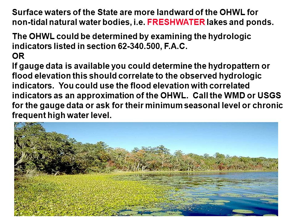 Surface waters of the State are more landward of the OHWL for