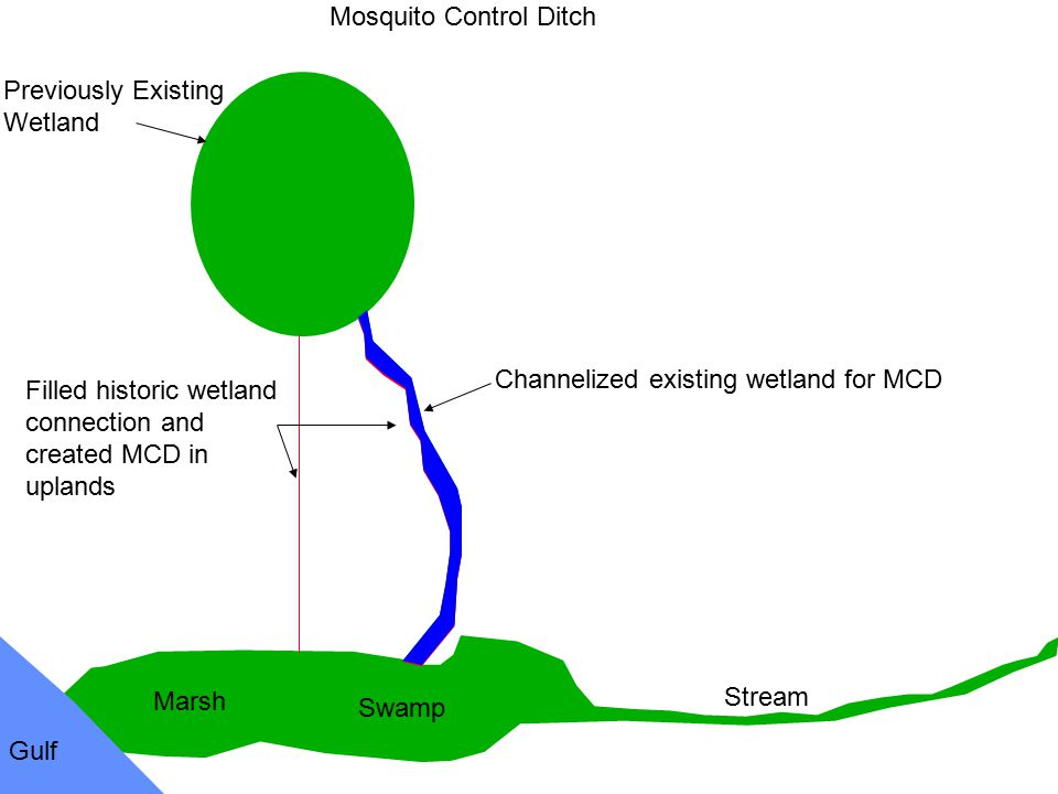 Previously Existing Wetland. Swamp. Marsh. Gulf. Stream. Mosquito Control Ditch.