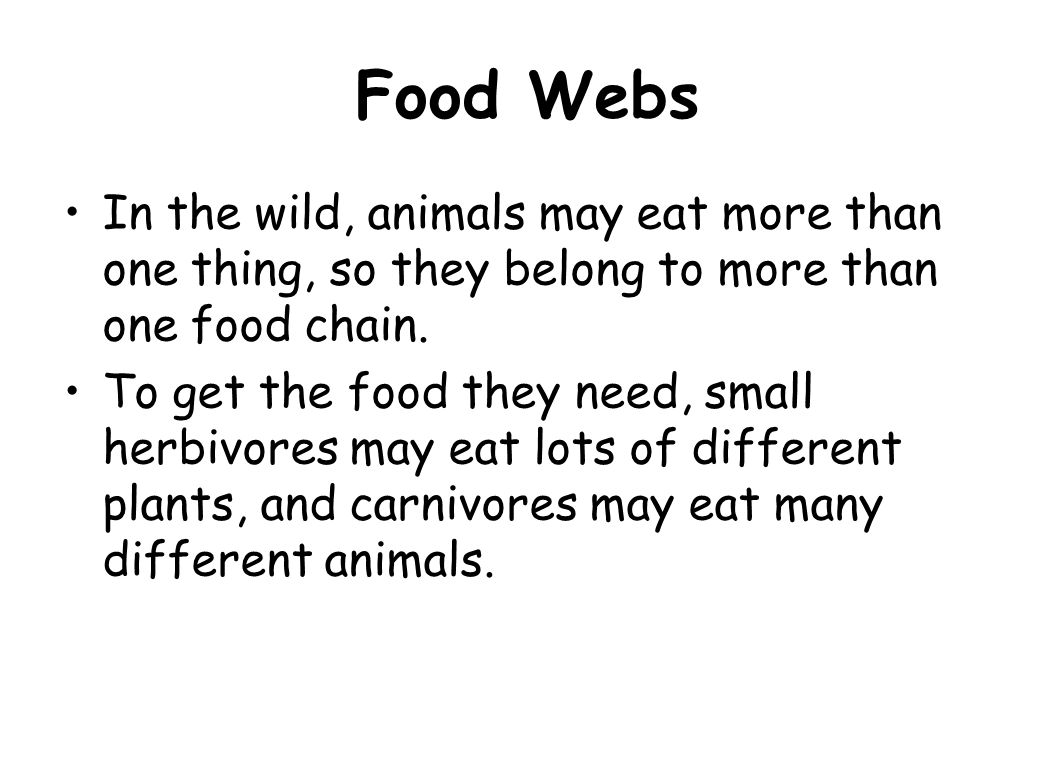 Food Webs In the wild, animals may eat more than one thing, so they belong to more than one food chain.
