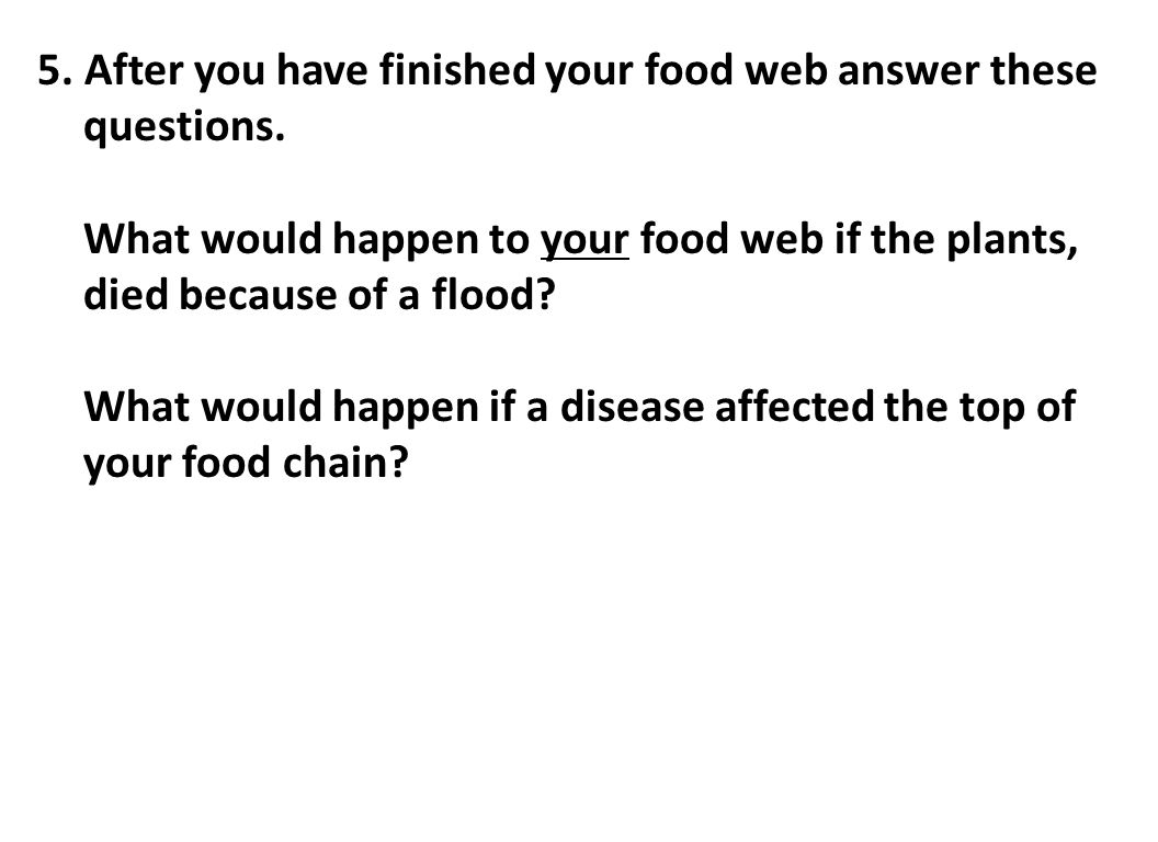 5. After you have finished your food web answer these questions.