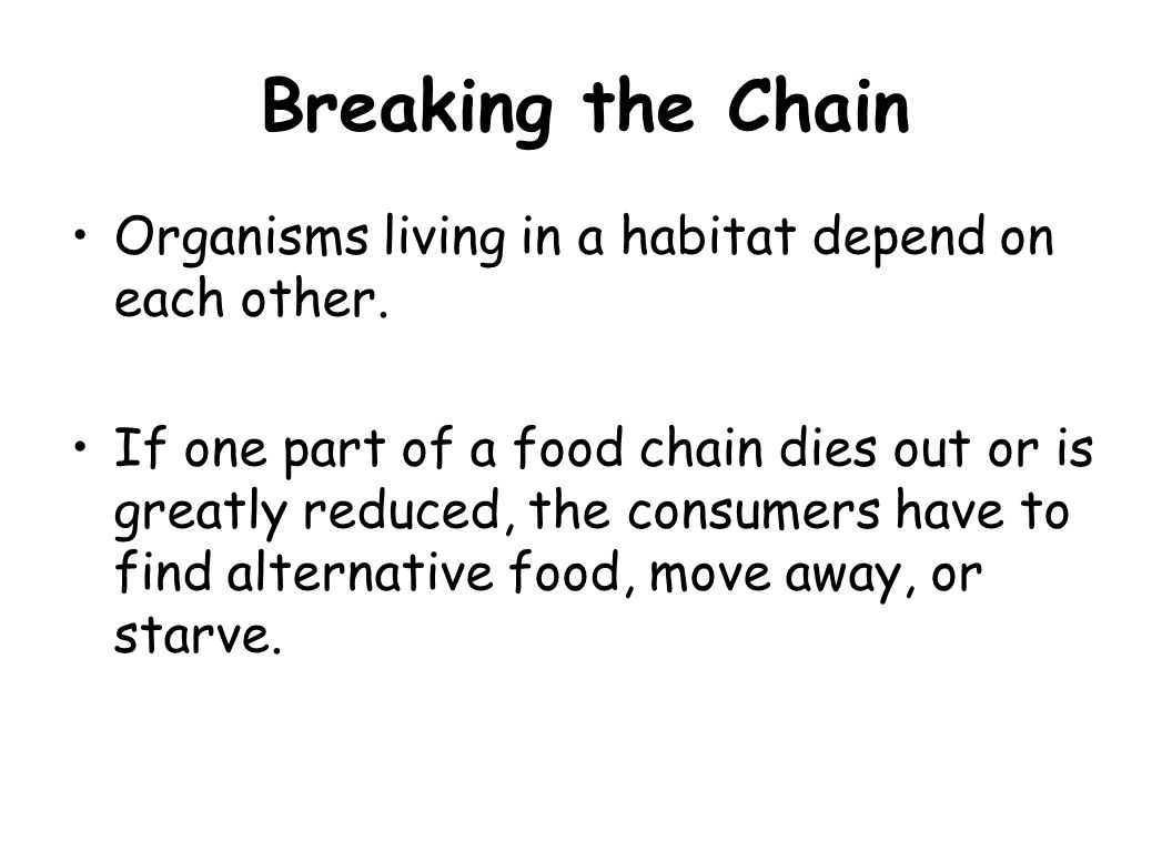 Breaking the Chain Organisms living in a habitat depend on each other.