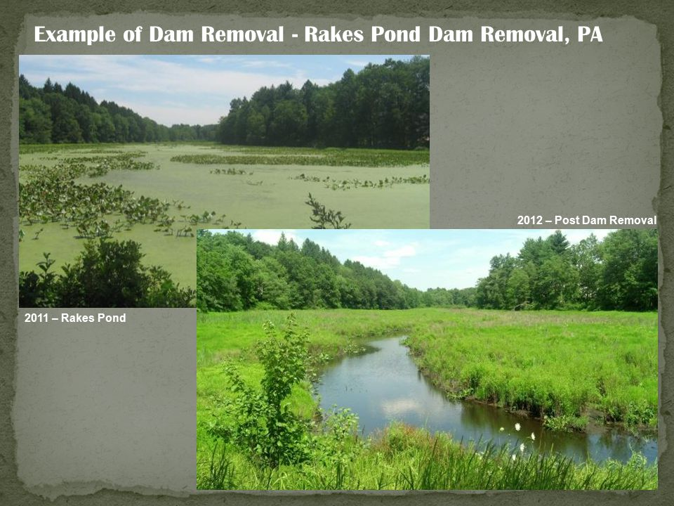 Example of Dam Removal - Rakes Pond Dam Removal, PA