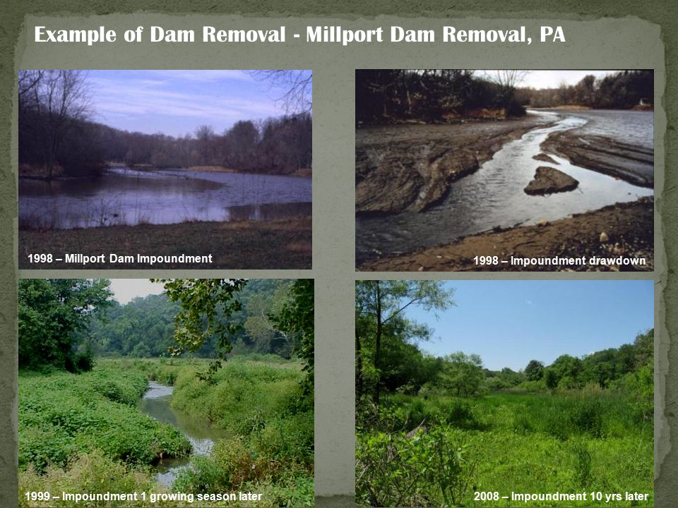 Example of Dam Removal - Millport Dam Removal, PA