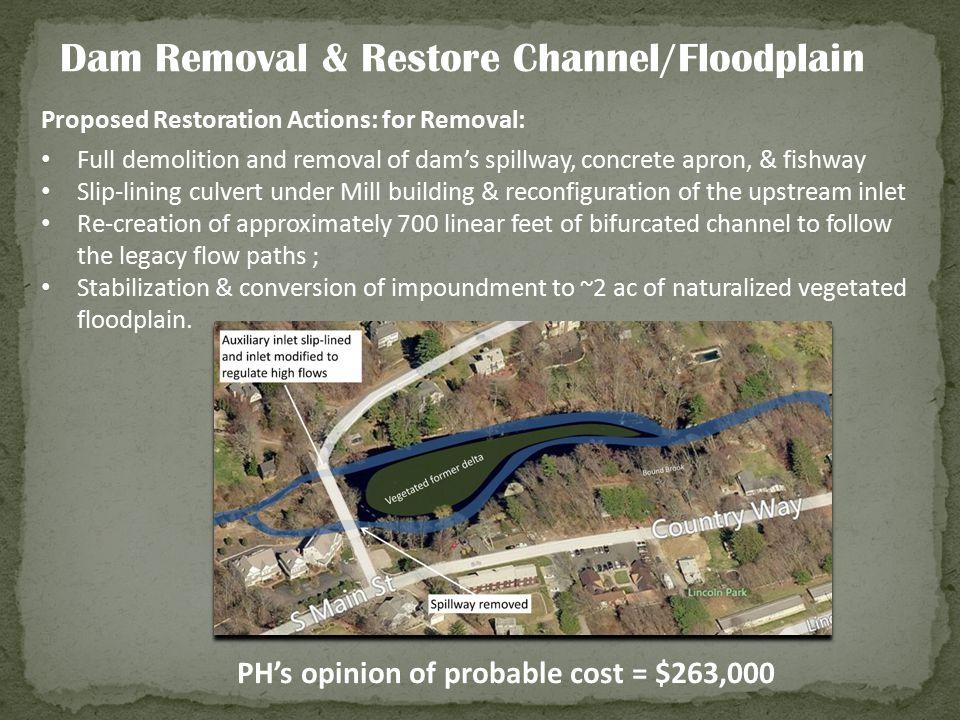 Dam Removal & Restore Channel/Floodplain
