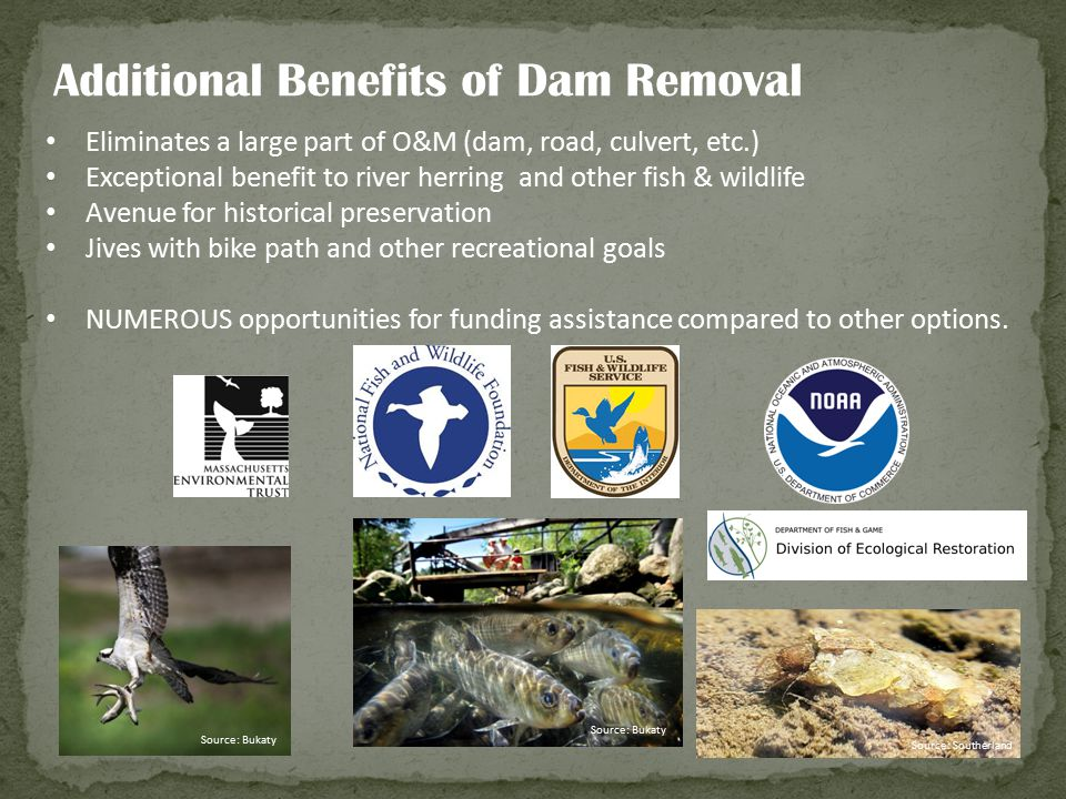 Additional Benefits of Dam Removal