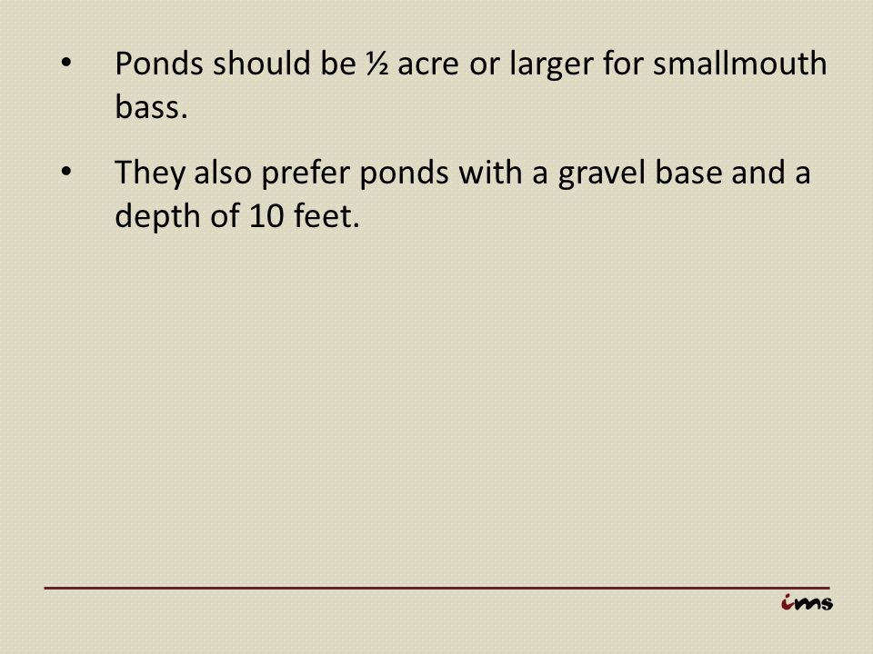 Ponds should be ½ acre or larger for smallmouth bass.