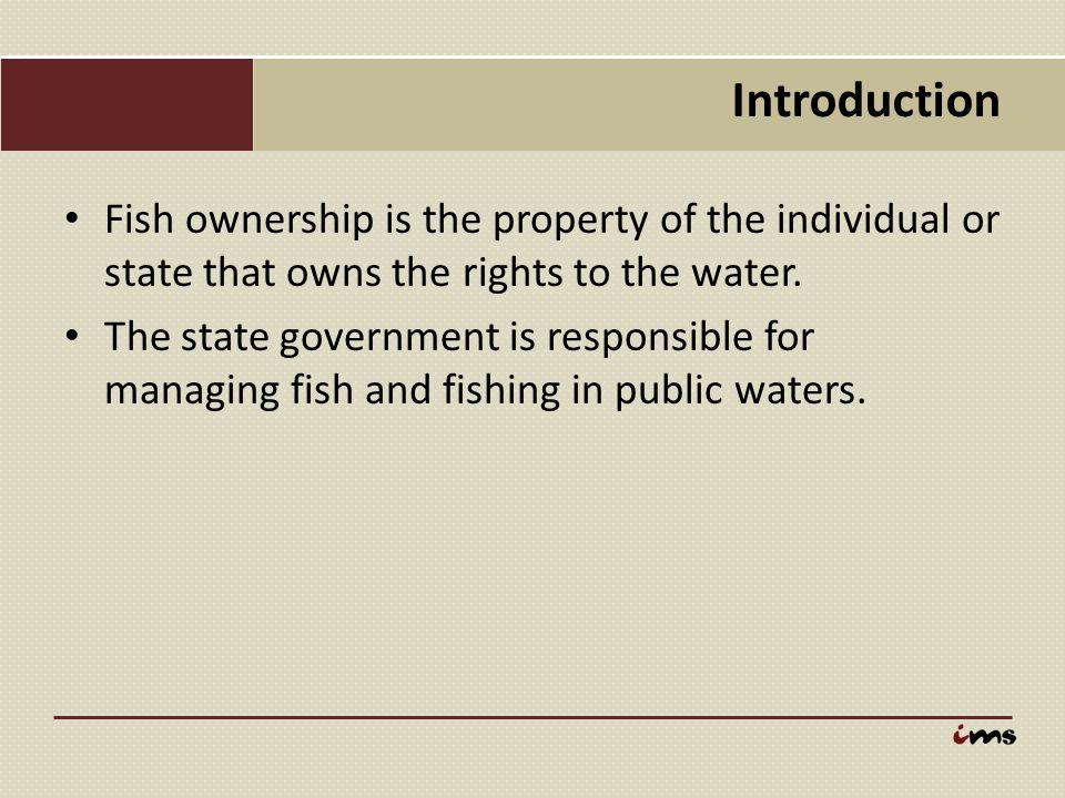 Introduction Fish ownership is the property of the individual or state that owns the rights to the water.