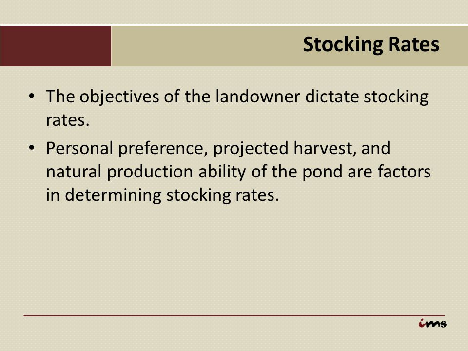 Stocking Rates The objectives of the landowner dictate stocking rates.