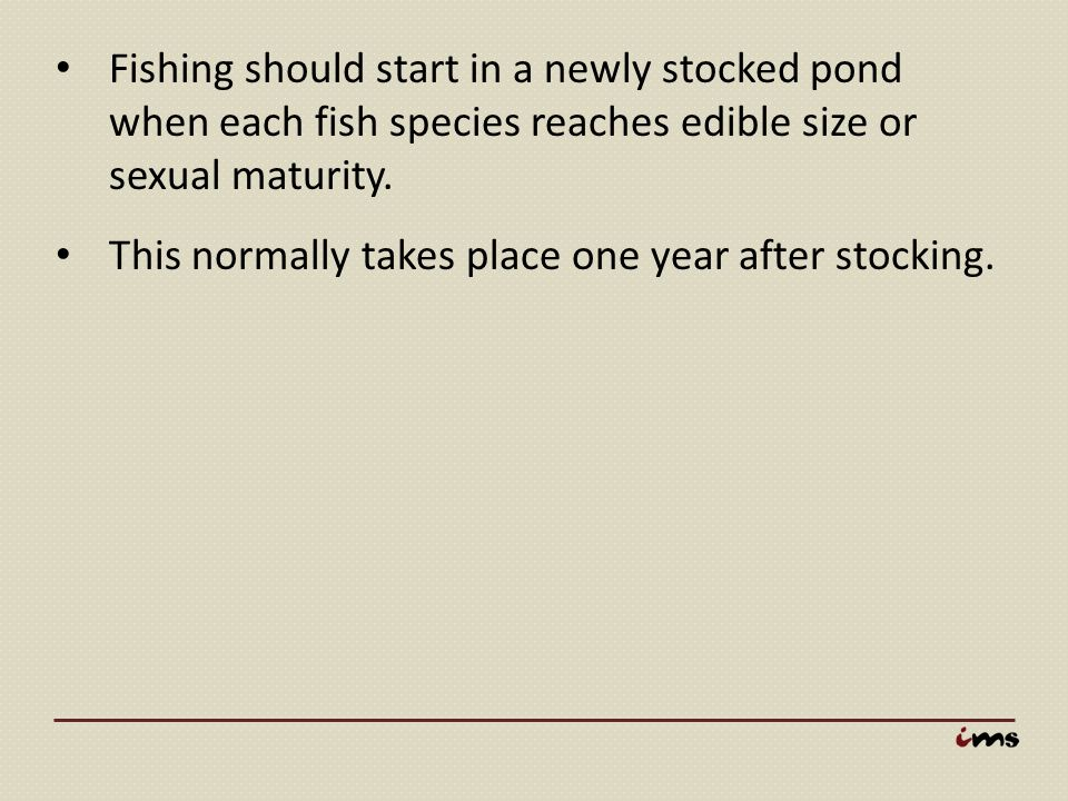 Fishing should start in a newly stocked pond when each fish species reaches edible size or sexual maturity.