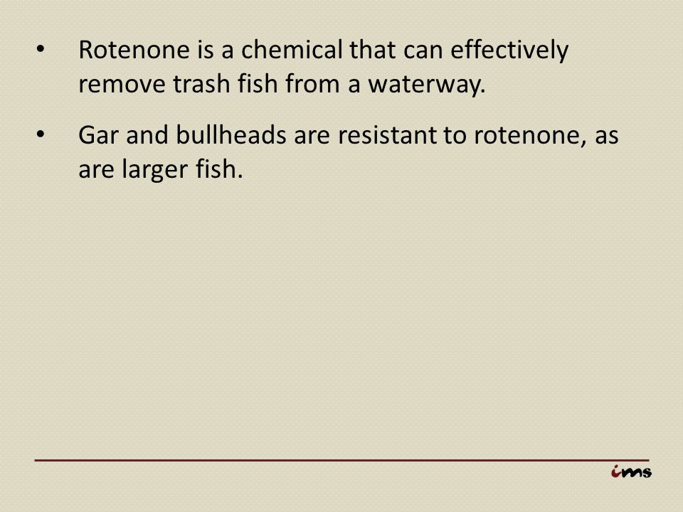 Rotenone is a chemical that can effectively remove trash fish from a waterway.