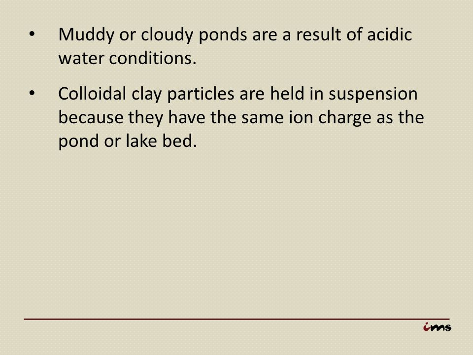 Muddy or cloudy ponds are a result of acidic water conditions.
