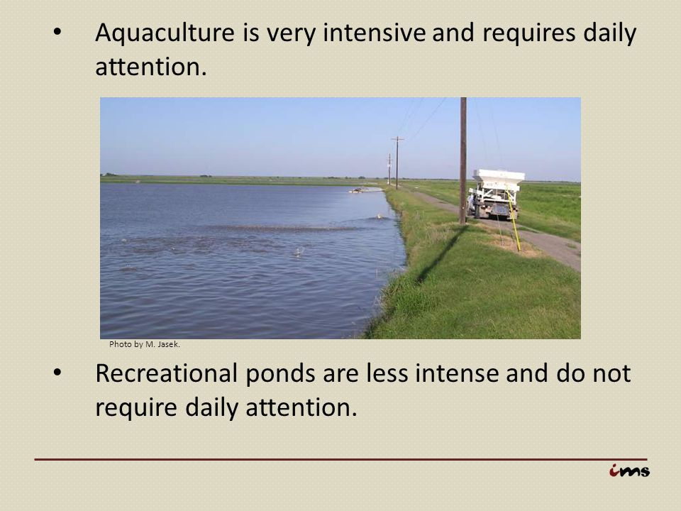 Aquaculture is very intensive and requires daily attention.