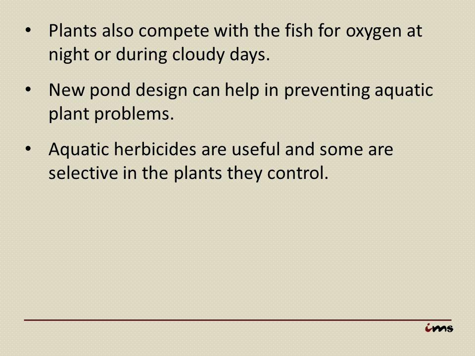 Plants also compete with the fish for oxygen at night or during cloudy days.