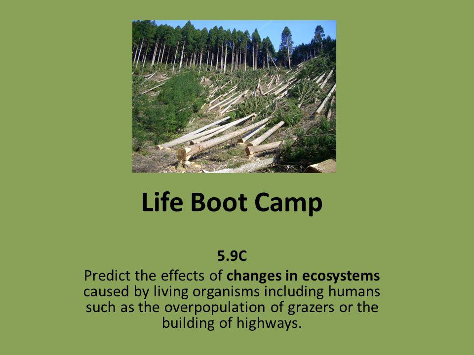 Life Boot Camp 5.9C.