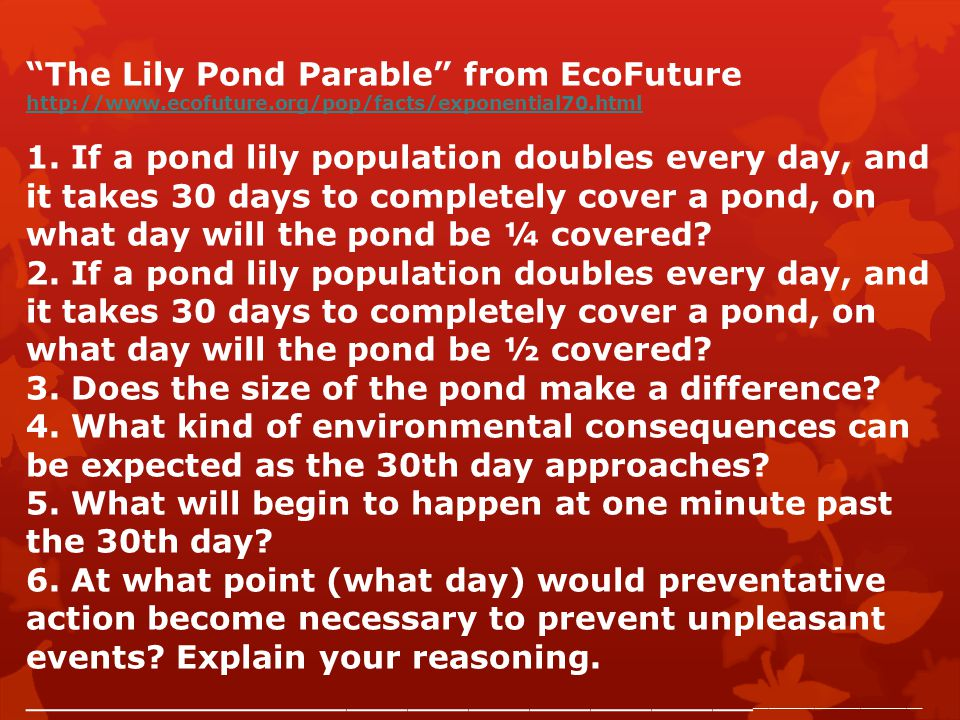 The Lily Pond Parable from EcoFuture