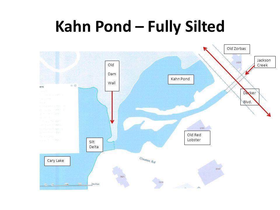 Kahn Pond – Fully Silted