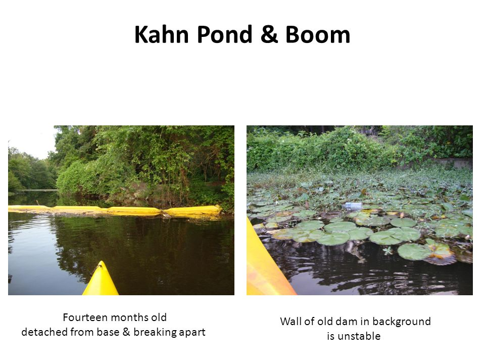 Kahn Pond & Boom Fourteen months old Wall of old dam in background